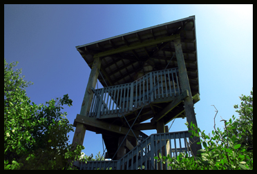 Glover Bight Cape Coral Observation Tower