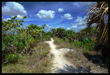 The Path - Rotary Park - Cape Coral